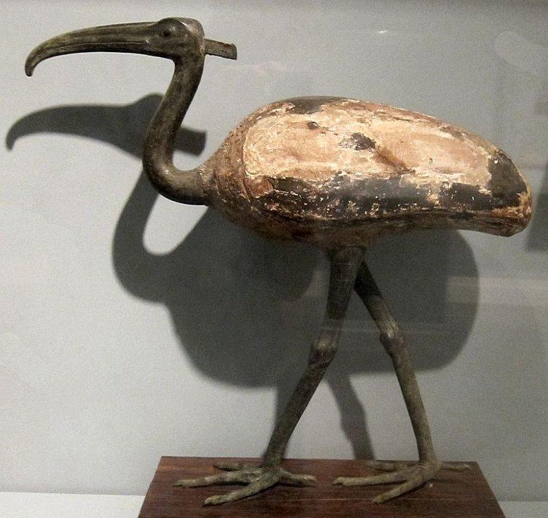 Ibis byl pro Egypťany ztělesněním Thovta, boha moudrosti, psaní a počítání