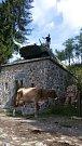 Koločava, krávy všude. Památník chlapcům z Koločavy, kteří padli v sovětské válce v Afghánistánu v 80. letech.