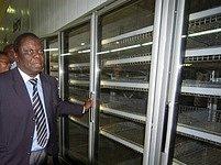 Prázdné regály obchodu v Zimbabwe