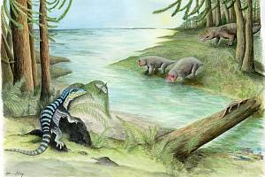 Antarctanaxe shackletoni byl velký jako leguán. Antarktida, která měla v té době mírné podnebí, byla pokryta lesy.