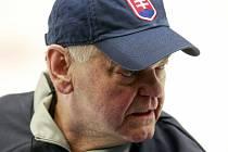 Vladimír Vůjtek během MS, kdy ještě vedl Slovensko