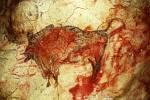 Světoznámé malby a rytiny z mladšího paleolitu ve španělské jeskyni Altamira.