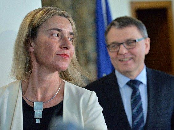 Ministr zahraničních věcí ČR Lubomír Zaorálek vystoupil 11. ledna v Praze na tiskové konferenci s šéfkou diplomacie Evropské unie Federikou Mogheriniovou.