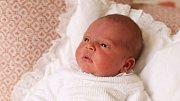 Princ Louis odpočívá na bílém polštáři