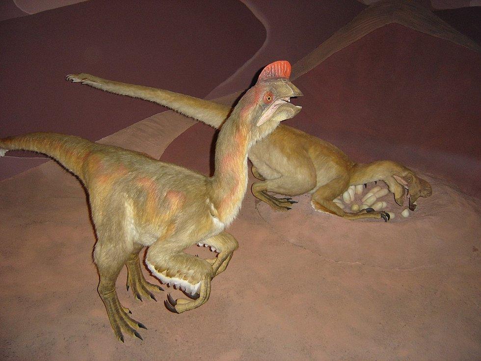 Umělecká rekonstrukce dvojice oviraptorů u jejich hnízda s vejci, Přírodovědné muzeum v Londýně