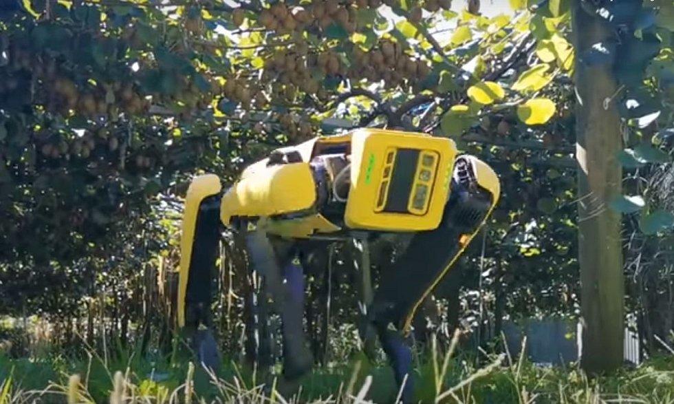 Roboty mohou být dobrým pomocníkem v zemědělství