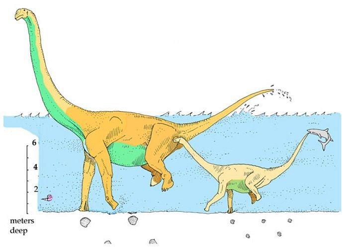 Možné vysvětlení podivných stop podle paleontologa Roberta T. Bakkera