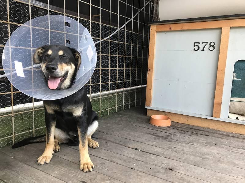 Jmenuji se Ben. Prodělal jsem operaci...ale stále jsem šťastný.