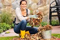 Zahradní vysavač