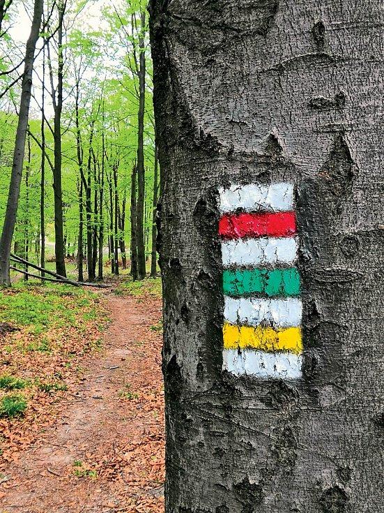 Druhy značek (shora dolů): červená,zelená i žlutá jsou jednoduché pěší pásové značky.