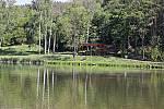 letní scéna za rybníkem
