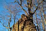 Roimund - zřícenina hradu v Jizerských horách u Bílého Kostela nad Nisou