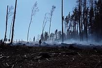 Hasiči na Vysočině museli 6. dubna vyjet asi k 80 požárům. Vlivem silného větru se po víkendovém pálení rozhořela špatně uhašená ohniště. Nejvíc zasažený je okres Pelhřimov