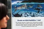 Výstava v Zoo Praha, která chce upozornit na znečišťování oceánů