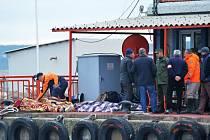 Záchranáři na břehu prohlížejí těla utonulých.