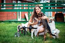 Alžběta Humlíčková zvířata miluje.
