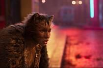 Filmové zpracování slavného muzikálu Cats