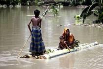 Obavy z pytláků mají úřady v severovýchodní Indii, kde záplavy vyhnaly z rezervací ohrožené nosorožce, slony a vysokou zvěř.