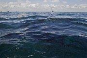Znečištění moře v důsledku ropné havárie