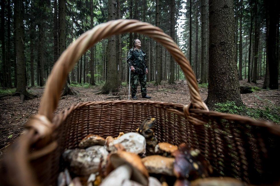 Mykolog a houbař Zdeněk Pelda