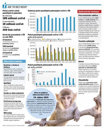Testy na zvířatech.