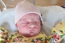 První dítě roku 2021 Plzeňského kraje, a zřejmě i celého Česka, je Viktorie, která přišla na svět 1. ledna minutu po půlnoci ve Fakultní nemocnici Plzeň