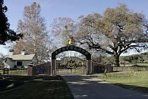 Ranč Neverland v Kalifornii
