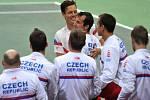 Radost českých tenistů z postupu do čtvrtfinále Davis Cupu.