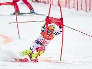 Sjezdové lyžování, závod družstev.