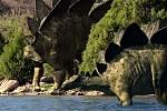 Stegosaurus patří celosvětově mezi nejpopulárnější a nejčastěji zobrazované dinosaury. Takhle byl ztvárněn v cyklu Andy a dobrodružství s dinosaury v rámci dětského vysílání CBeebies britské televize BBC