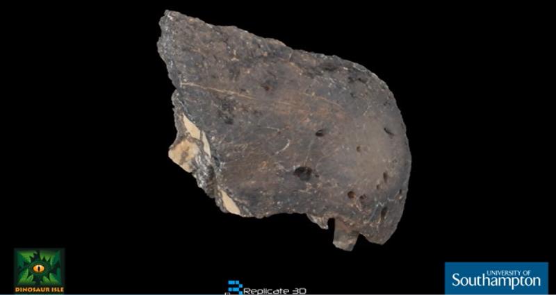 3D Scan čenichu Riparovenatora milnerae