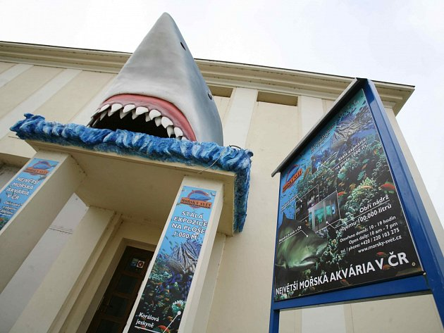 V září 2005 bylo otevřeno v pražském Mořském světě obří akvárium, největší v České republice.
