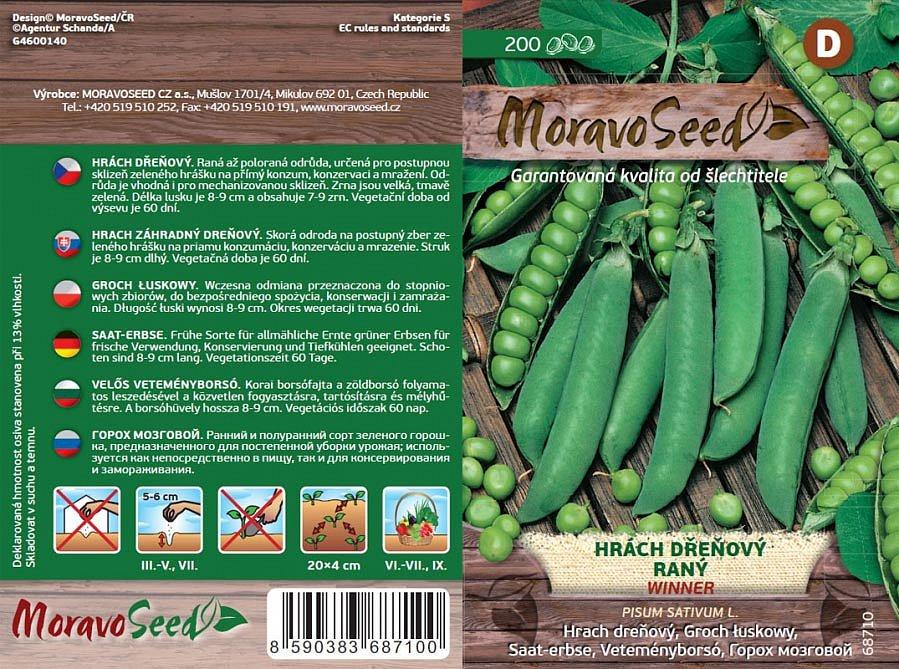 Kromě klasických druhů zeleniny lze dnes koupit i semínka jarních odrůd. Na snímku hrách Winner