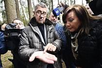 Premiér Andrej Babiš (vlevo), ministr zemědělství Miroslav Toman (v pozadí) a ministryně financí Alena Schillerová v lokalitě Bílovna nedaleko Bernartic, kde si prohlédli lesy zasažené kůrovcem.