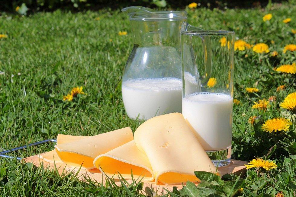 Význam mléka a mléčných výrobků si podle výrobců uvědomuje stále více lidí.