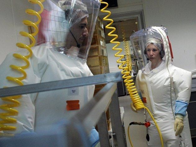 Odborníci se vesměs shodují, že virus eboly se mimo jiné kvůli nízkým teplotám ve střední Evropě těžko může masově rozšířit. Ilustrační foto.