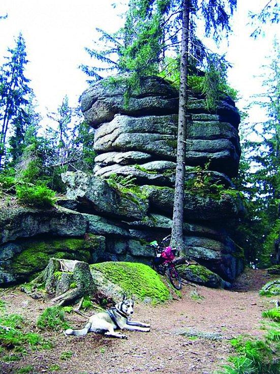 Vrchol Kamenec: Nejvyšší hora české části Novohradských hor se nachází půl kilometru od česko-rakouské státní hranice.