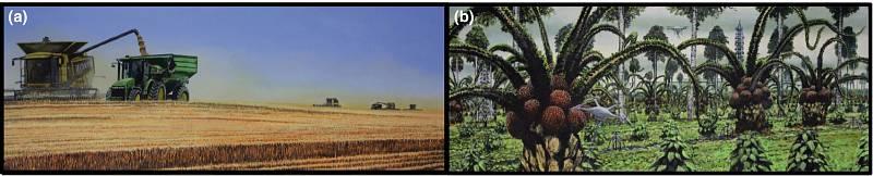 Americký středozápad v současnosti a v roce 2500. Tedy v případě, že se lidstvu nepodaří zpomalit globální oteplování. Ilustrace je součástí vědecké studie, publikované v časopisu Global Change Biology.