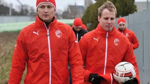 David Limberský (vpravo)