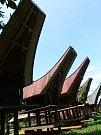 Tradiční obydlí Torajů se nazývá tongkonan. Střechy těchto domů tvarem připomínají buvolí rohy, ale také loď. Právě na lodích totiž údajně do oblasti připluli předci nynějších obyvatel.