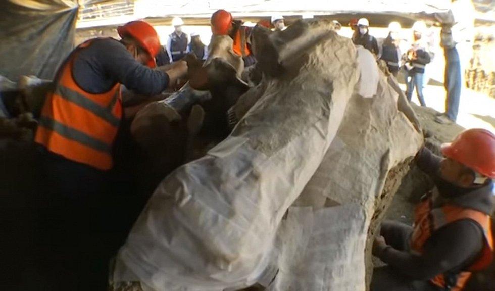 Pasti obsahovaly kosti nejméně 14 mamutů kolumbuských