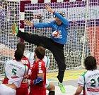 Brankář Petr Štochl čaruje proti Alžírsku.