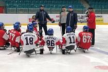 Čeští para hokejoví reprezentanti