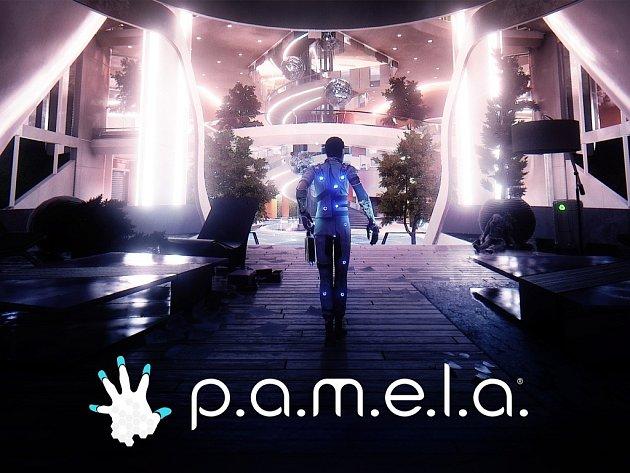 Počítačová hra P.A.M.E.L.A.