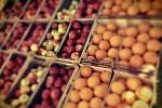 Nabídka ovoce. Ilustrační foto