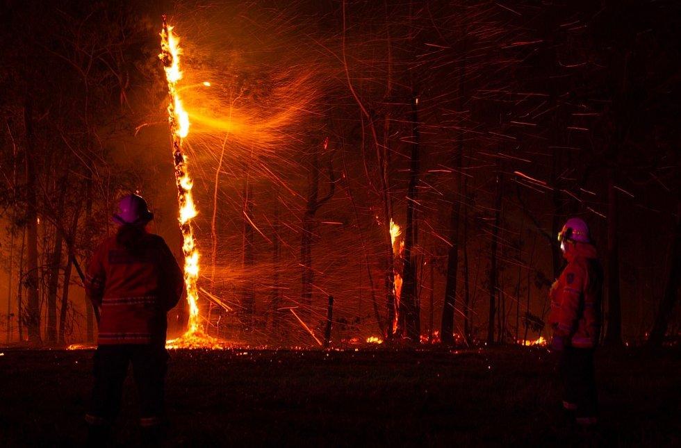 Východ Austrálie sužují požáry. V oblasti už zničily přes deset kilometrů čtverečních.