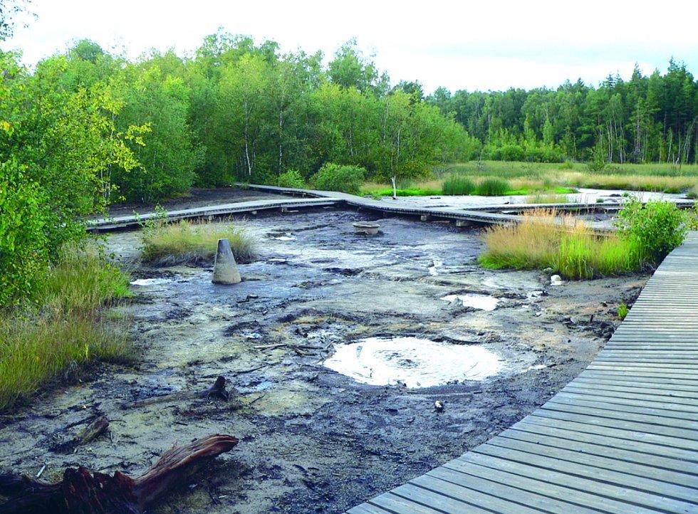 Přírodní rezervace Soos u Chebu. Bažiny, mokřady a nádherné mechové útvary.