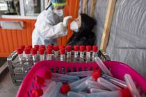 Odběry vzorků pro testování na koronavirus - ilustrační foto.