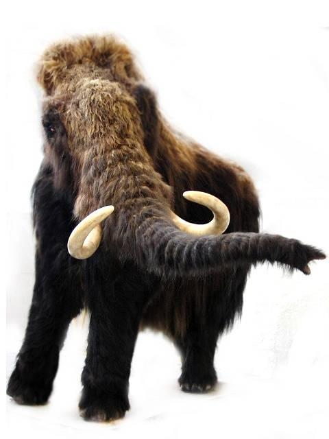 Model mamuta v muzeu ve Stuttgartu.