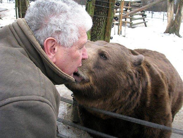 Berounští televizní medvědi Vojta, Kuba a Matěj oslavili ve čtvrtek 13. ledna 2011 své jedenácté narozeniny.